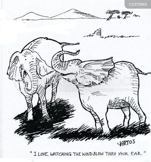 flirter cartoon rencontres franco malgaches