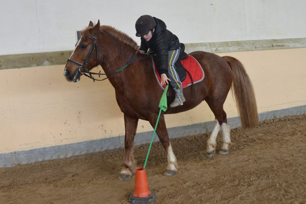Les chevaux ibériques à Beaucaire