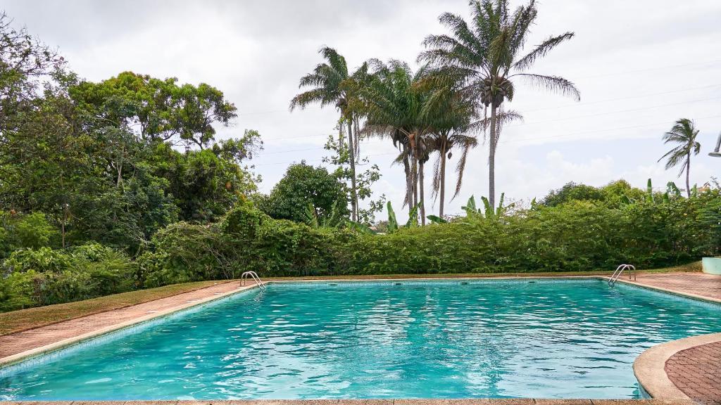 rencontre a la reunion 100 tropical rencontres prescrire angers 2019