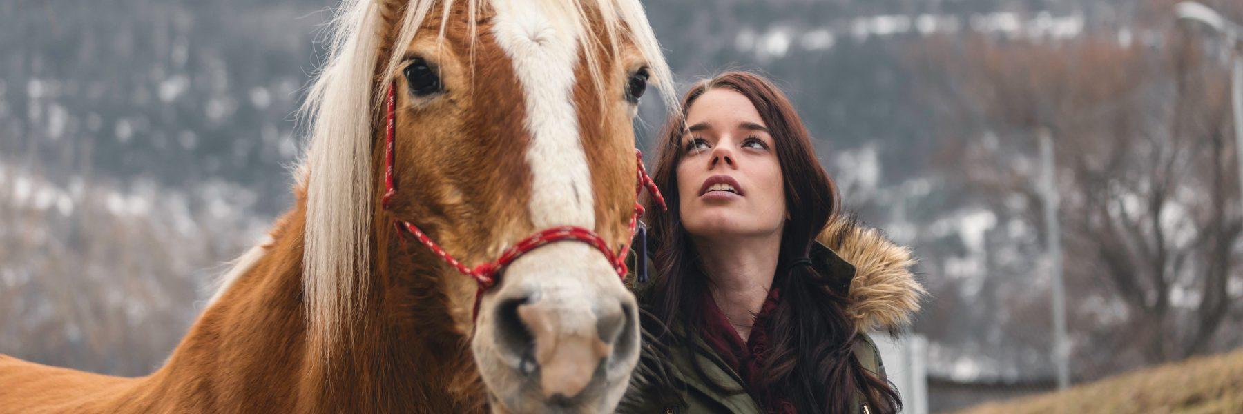 site rencontre cheval