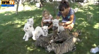 Les Zoos dans le Monde