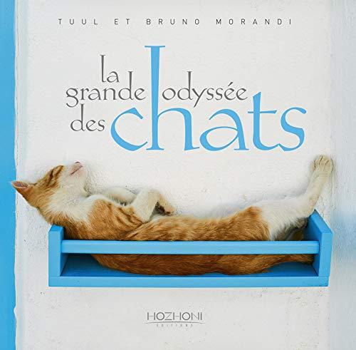 chat rencontre windows phone chat rencontre reunion gratuit