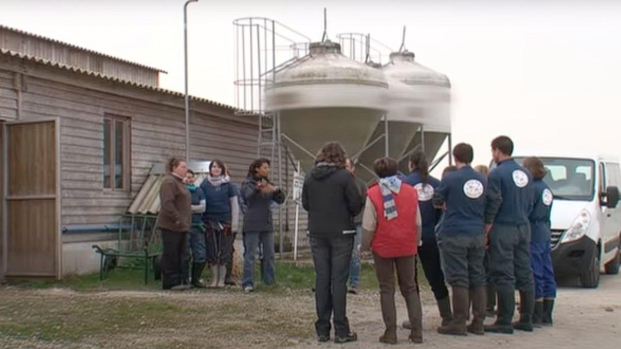 recherche agriculteur celibataire annonce rencontre tlemcen